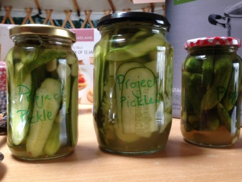 Project pickle