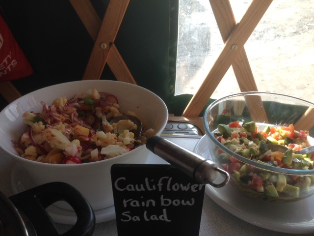 Cauliflower Rainbox Salad1